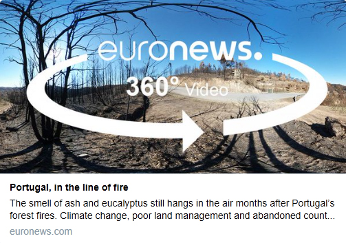 2017_euronews_screengrab.jpg