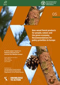 Productos forestales no madereros para las personas, la naturaleza y la economía verde