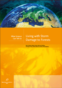 Living with Storm  Damage to Forests