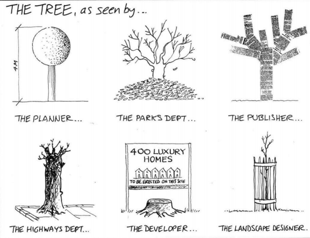 Different perspectives of a tree.